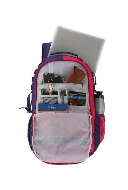 52308e668b Buy Skybags Komet Plus 02 Purple   Cerise Red Laptop Backpack Online ...