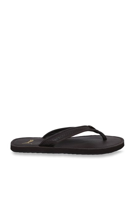 c7256ab14e08 Buy Puma Java NT IDP Dark Brown Flip Flops for Men at Best Price ...