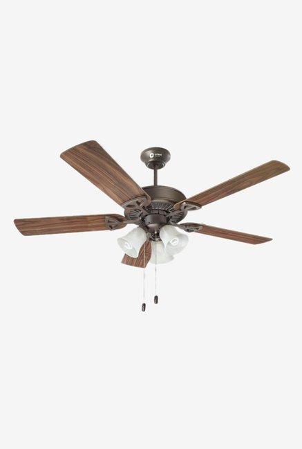 0471d6a37e7 Buy Orient Woodwind 1300 mm 5 Blades Ceiling Fan Online At Best ...