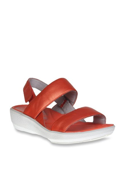 f5790b772418e9 Buy Clarks Wave Shine Grenadine Red Back Strap Sandals for Women at Best  Price   Tata CLiQ