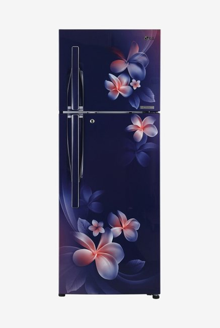 LG GL-T322RBPN 308 L Inverter 4 Star Double Door Refrigerator (Blue Plumeria)