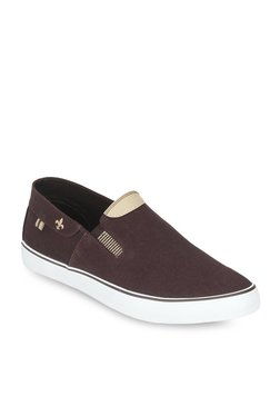 Bond Street By Red Tape Coffee Brown & White Slip-Ons