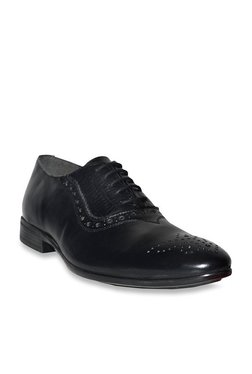 Salt 'n' Pepper Arman Figo Black Brogue Shoes