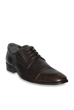 Salt 'n' Pepper Dark Brown Derby Shoes