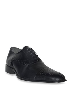 Salt 'n' Pepper Balforce Black Brogue Shoes