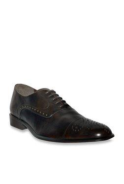 Salt 'n' Pepper Balforce Dark Brown Brogue Shoes