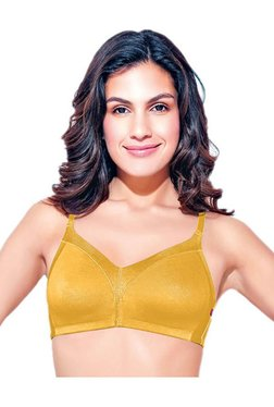 Enamor Mustard Non Wired Non Padded Seamless Bra