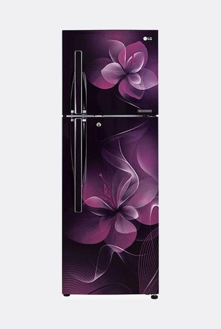 LG GL-F282RPDX 4S 255L Refrigerator (Purple Dazzle)