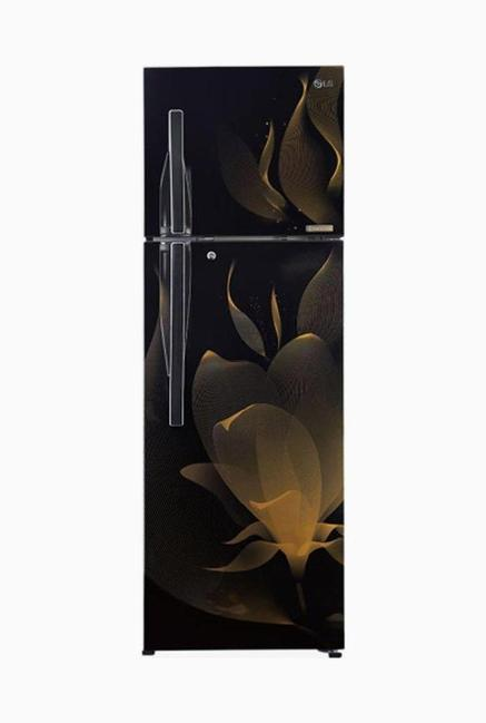 LG GL-T402RTMN 4S 360L Double Door Refrigerator(Twilight Magic)