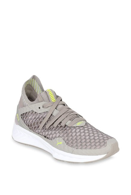 Buy Puma Ignite Netfit Rock Ridge Running Shoes for Women