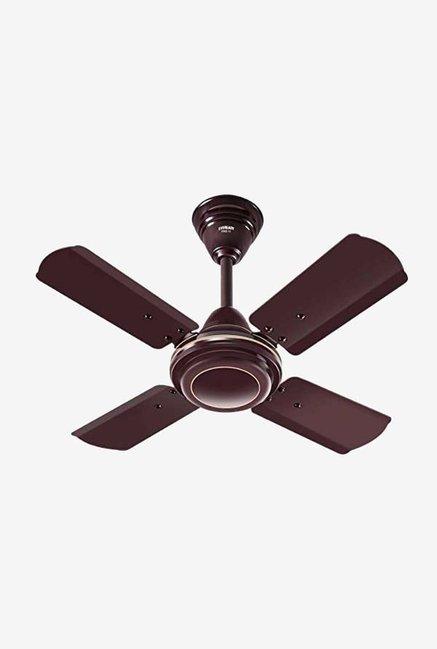 Eveready FAB M 600 mm 4 Blades Ceiling Fan (Brown)