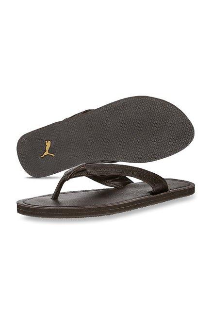 7a25c0c42fd3 Buy Puma Java Brown Flip Flops for Men at Best Price   Tata CLiQ