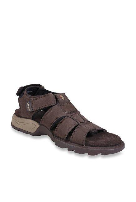 6f8464cd8453 Buy Woodland Brown Fisherman Sandals for Men at Best Price ...