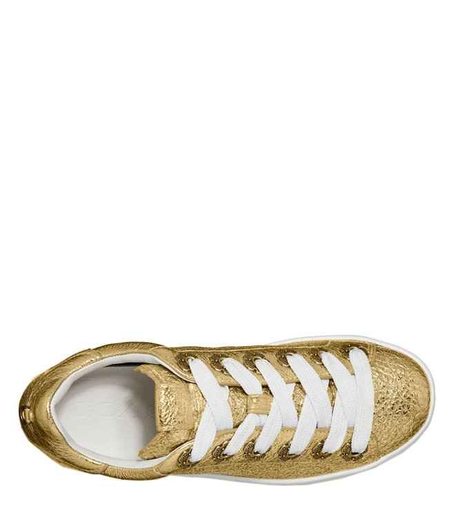 54405d9b0a56 Buy Coach Gold C101 Tea Rose Eyelets Low Top Sneakers for Women ...