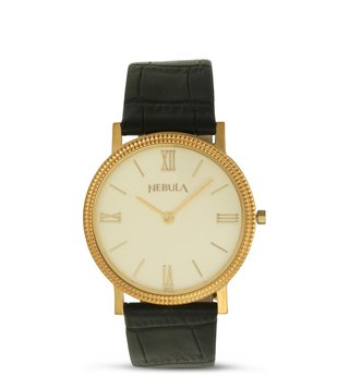 Nebula Watches ND1045DL01 Gold Watch for Men