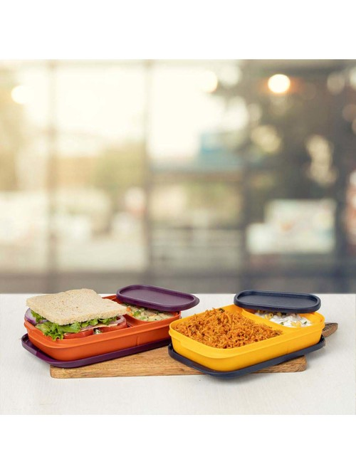 Tupperware Multicolor Lunch Boxes   Set of 2